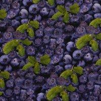 BW-Druck Yummy Food - Blaubeeren